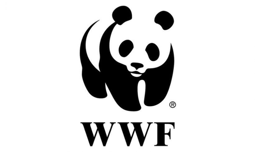 已列入世界自然基金會不吃魚翅支持機構名單